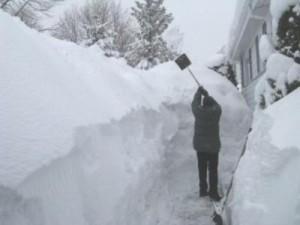 Europa se va confrunta cu cea mai grea iarna din ultimii 100 ani ?