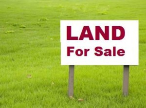 Lend a helping land for bussiness